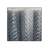 Chain Link Fencing 001