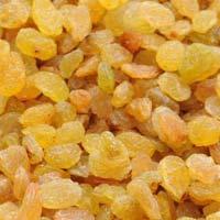 Golden Raisins Kishmish Kismis