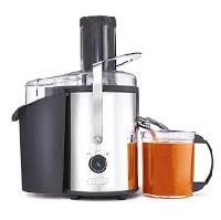 High Power Electric Juicers