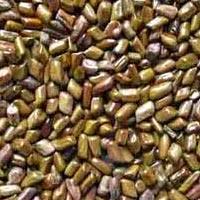 Cassia Seeds