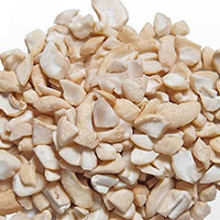 Cashew Nut Kernel Swp