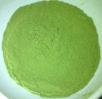 Alfalfa Leaves Powder
