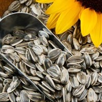 Grey Sunflower Seeds