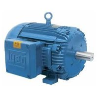 Explosion Proof Electric Motor