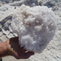 Raw Sea Salt