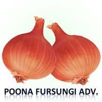 Poona Fursungi Onion Seed