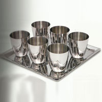Stainless Steel Serving Glass Set