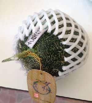 Japanese Melon