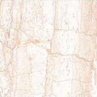 250x325 Ceramic Digital Wall Tiles