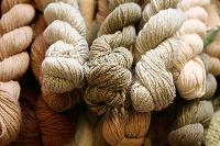 Cotton Organic Yarn