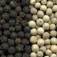 Black Pepper, White Pepper