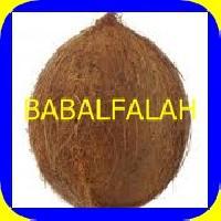 White Fresh Coconut