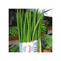 Fresh Moringa
