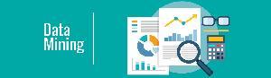 Data Mining Services