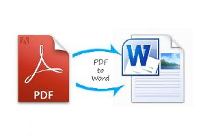 PDF To Word Converter Services