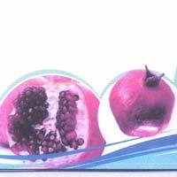 TC Pomegranate Plants