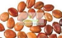 Amaltash seeds ( Cassia fistula )
