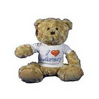 Kids Teddy Bears