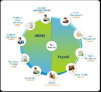 Shree Hrms Web Based Payroll Management Software