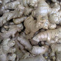 Organic Fresh Ginger