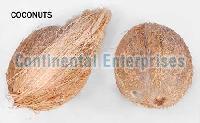 Fresh Coconuts1