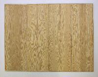 Polypan Plywood Panel