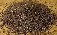 Jute Seeds