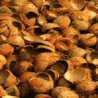 Coconut Shell Chips