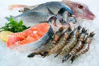 Frozen Sea Food