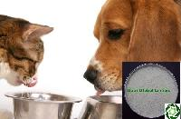 Guar Gum Powder For Pet Food