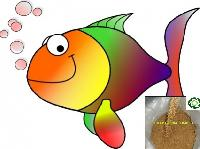 Guar Korma Fish Feed