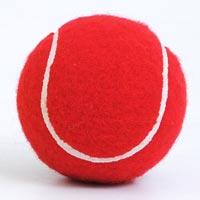 Cricket Synthetic Ball