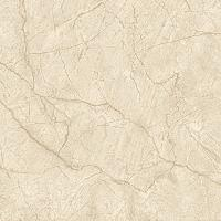 600x600mm Soluble Salt Vitrified Tiles