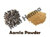 Amla Seed