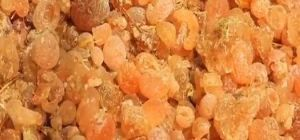 Gum Arabic Acacia Seyal Talha