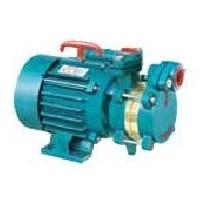 Domestic Monoblock Pumps - 01