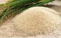 Swarna Masoori Rice
