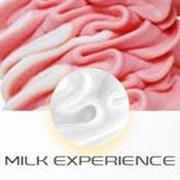 Milk Experience Ice Cream