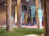 Events Artificial Grass
