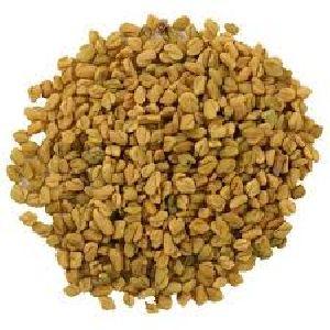 Fenugreek Powder (trigonella Foenum Graecum)