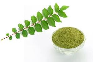 Curry Leaf Powder (Murraya Koenigi)