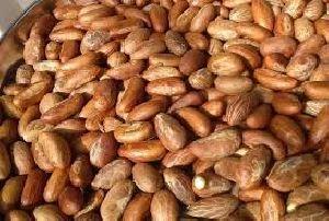 African Bitter Kola Nuts 0.5lbs : Kola Nut / Kola Nuts For Sale /kola Nut Extract