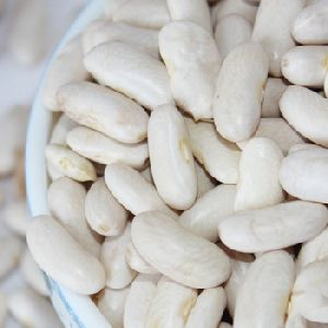 High Quality Hps Long Shape White Kidney Beans