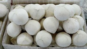 Young Fresh Coconut/matured Fresh Coconuts