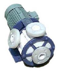 Vertical Glandless Pump
