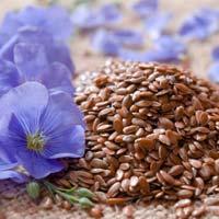 Non Gmo Flax Seeds