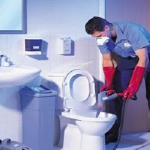 Regular Deep Toilet Cleaning Services