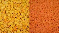 Yellow Peas Lentils