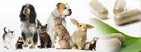 Animal Healthcare Products