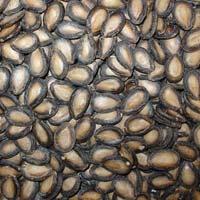Big Flake Black Melon Seeds